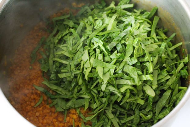 Spinach in a pot of dahl