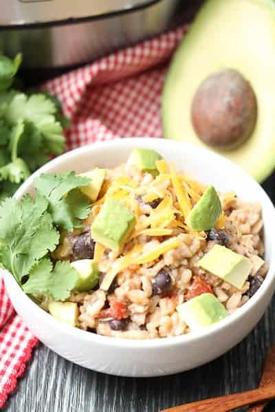 Instant Pot Salsa Chicken & Brown Rice
